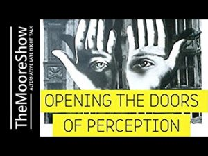 Opening-The-Doors-of-Perception-by-Connecting-To-Your-Soul-and-Higher-self